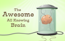 All Knowing Brain